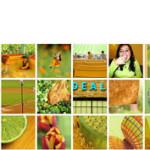 Buscador de fotos en Flickr por colores
